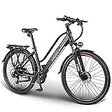 ESKUTE Bicicleta Eléctrica Wayfarer 28'' E-Bike Urbana Trekking Holandesa para Adultos Unisex, Batería de Litio Extraíble 36V 10Ah, 250W Motor,...